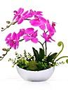 Ψεύτικα λουλούδια 2 Κλαδί Κλασσικό Σύγχρονη Σύγχρονη Phalaenopsis